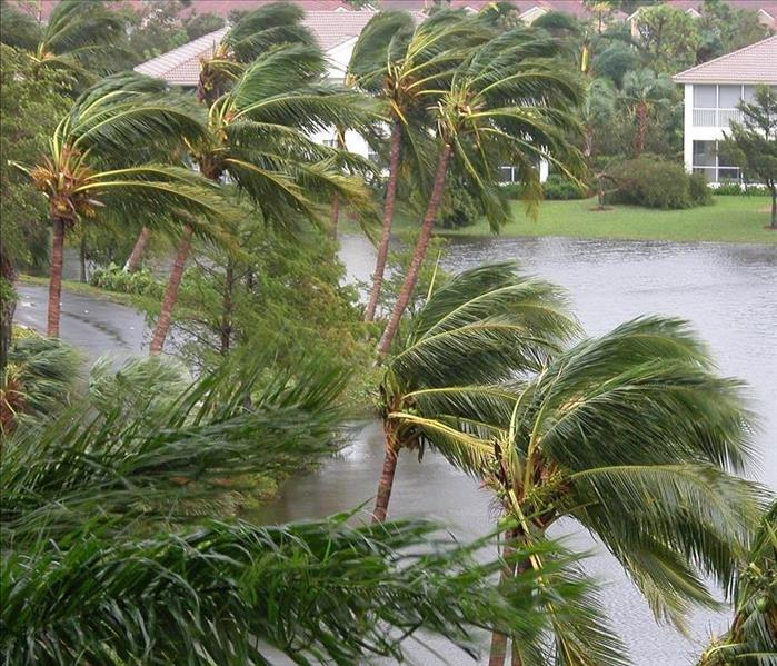Storm Damage Seemingly Secure Outside, Many Cape Coral Condos Suffer Secondary Water Damage Inside After Hurricane Irma