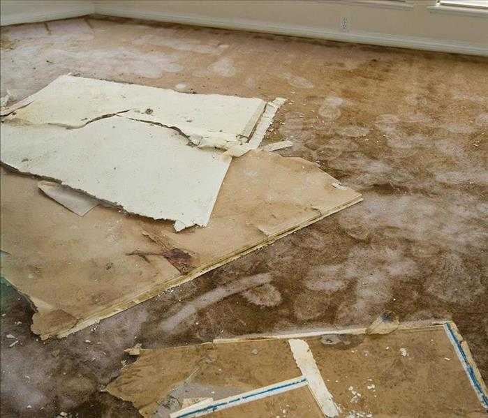 Water Damage Most Common Causes of Water Damage in Your North Fort Myers Home