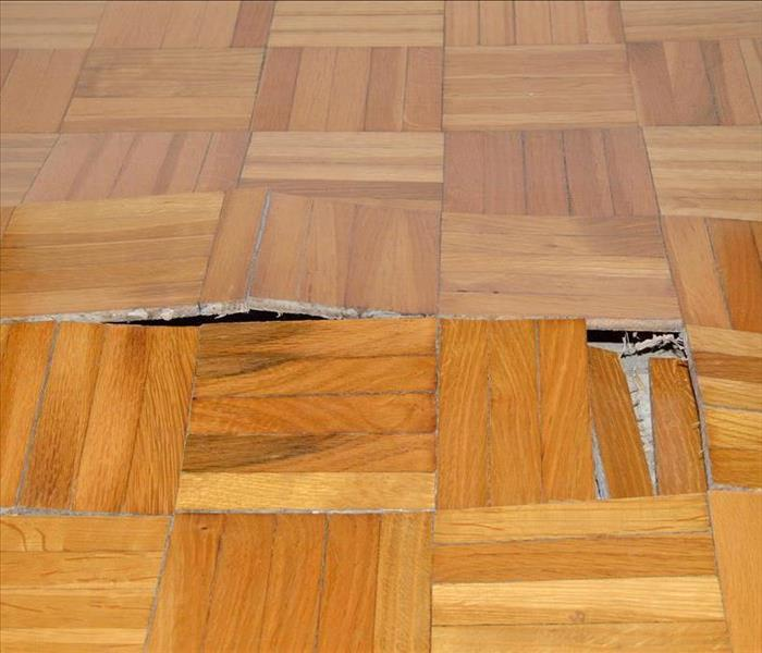 Water Damage Recovery From Water Damage To Your Pineland Home