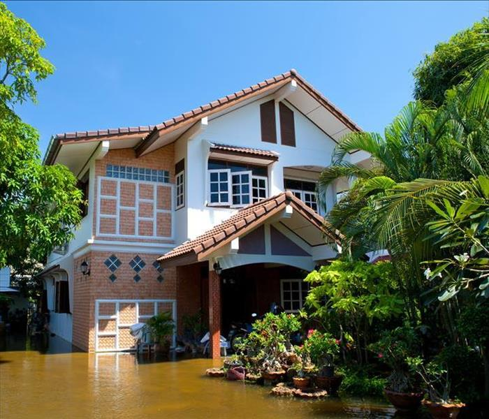 Water Damage 3 Signs of Cape Coral Home Water Damage and What to Do About It