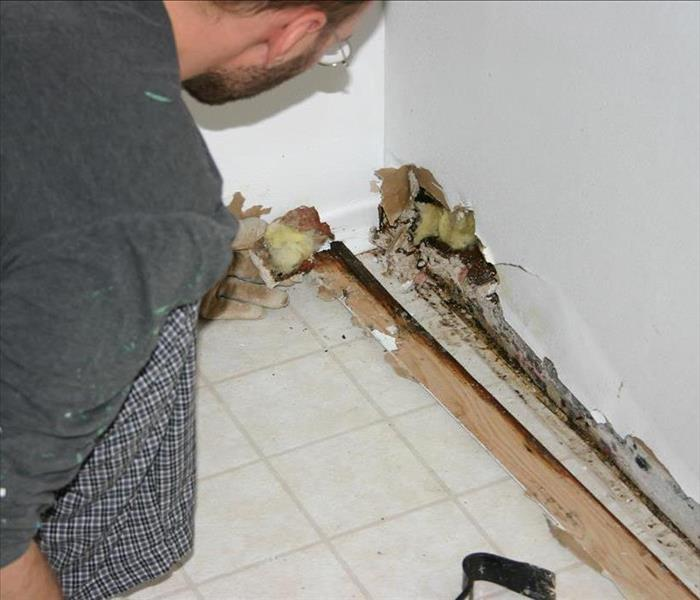 Mold Remediation Mold Growing in Your AC Unit in Your North Fort Myers Vacation Home