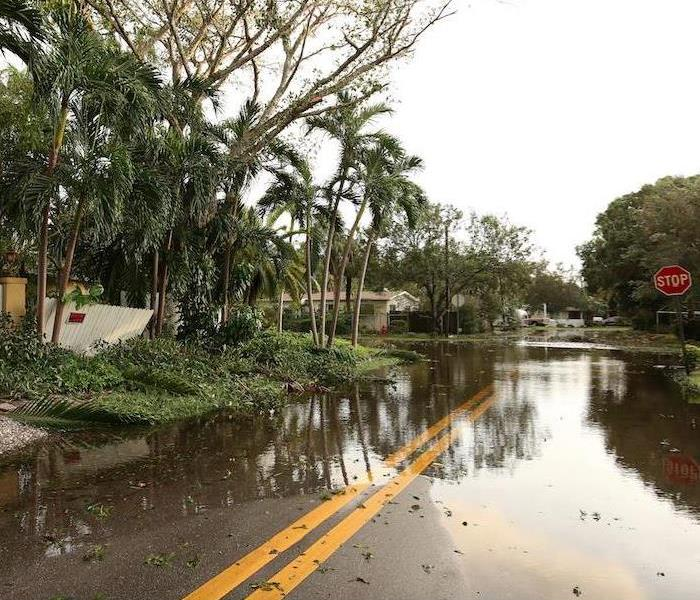 Why SERVPRO Revealed: Flooding in Cape Coral Can be Overcome With Team SERVPRO