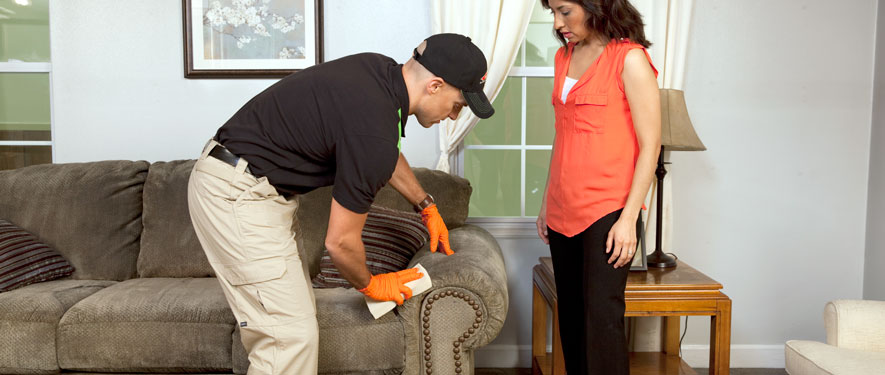 Cape Coral, FL carpet upholstery cleaning
