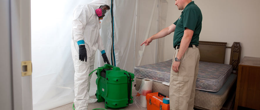 Cape Coral, FL mold removal process